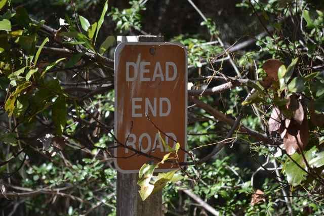 deadendroadmore15